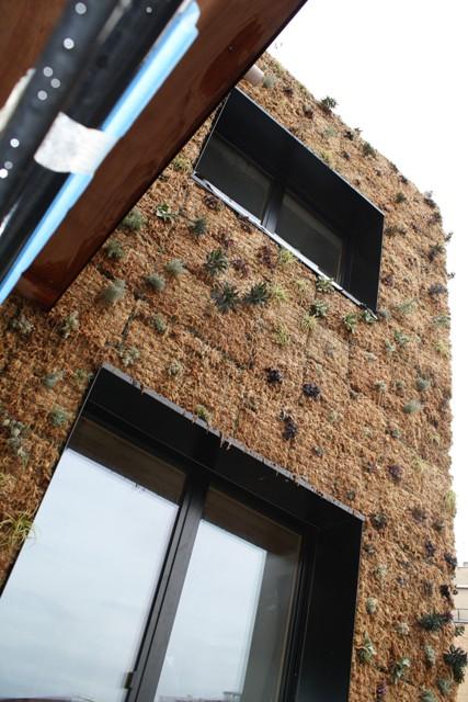 pegase facade vegetalisee Architecte Bureau Impact Pierre Coppe